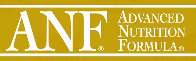 ANF タミアミ アダルトの詳細データ タイトル画像