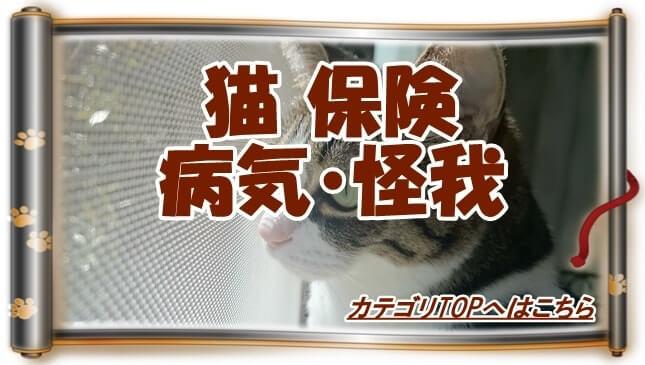 猫の保険・病気・怪我カテゴリTOPへ(窓際から外を眺める愛猫ミミ巻物Ver.)
