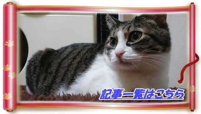 猫歴の記事一覧へ(猫マットの上で寛ぐ愛猫ミミ巻物バージョン)