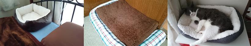猫ベッドや猫マットといった我が家の猫の冬用グッズ