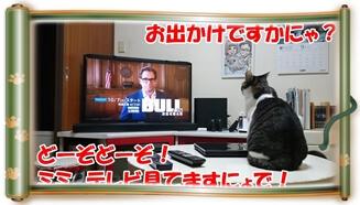 飼い主が出掛けるというのにテレビを見ている愛猫ミミ(巻物Ver.)