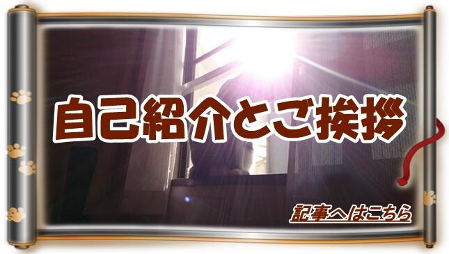 自己紹介とご挨拶へ(太陽の光に包まれる愛猫モコ巻物Ver.)