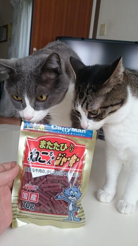 愛猫たちとジャーキー
